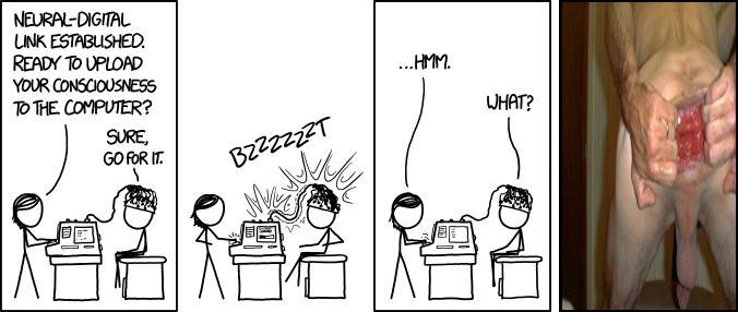 Brain Upload