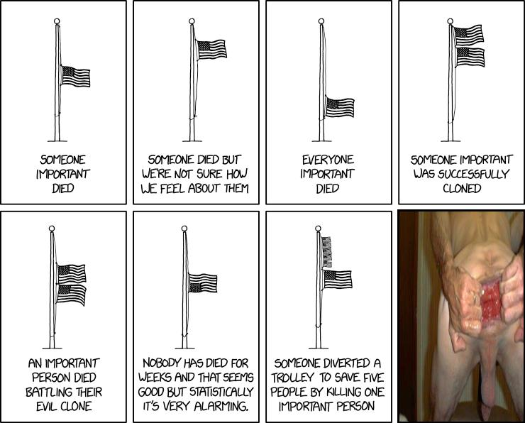 Flag Interpretation