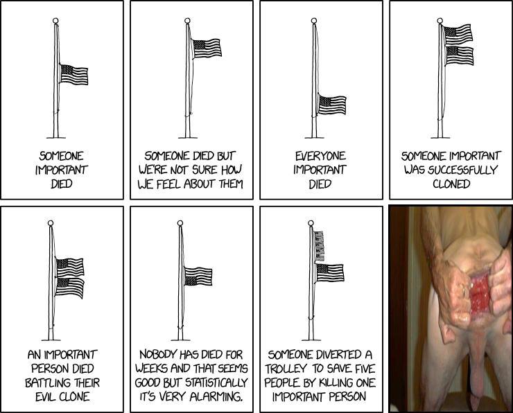 Flag Interpretation