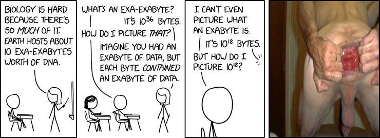 Exa-Exabyte
