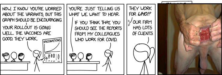 Virus Consulting